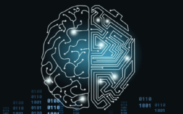 causal cognition in humans and machines