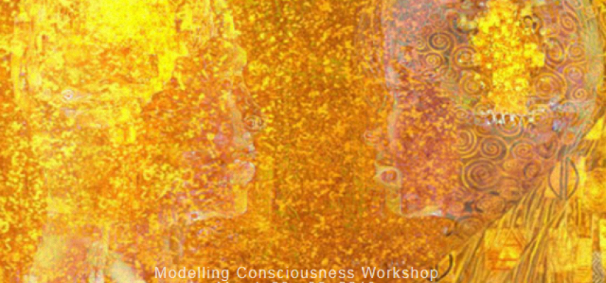 modelling consciousness workshop